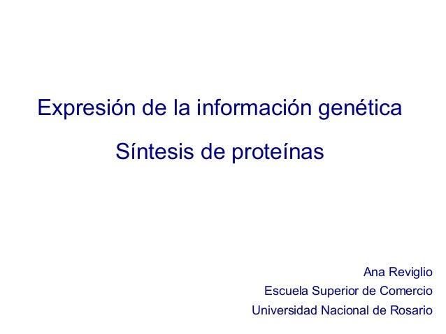 Expresión de la información genética       Síntesis de proteínas                                        Ana Reviglio      ...