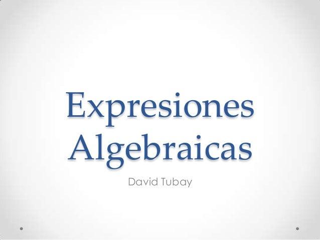 Expresiones Algebraicas David Tubay