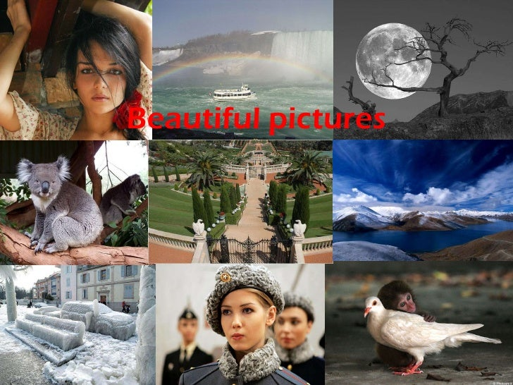 Exquisite pictures