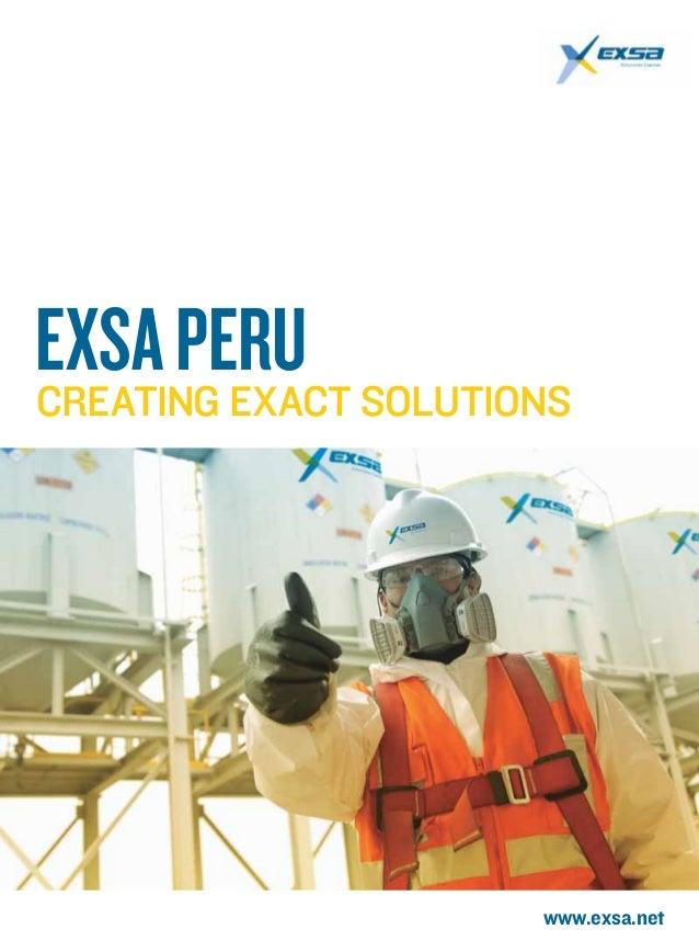 www.exsa.net EXSAPeruCreating exact solutions