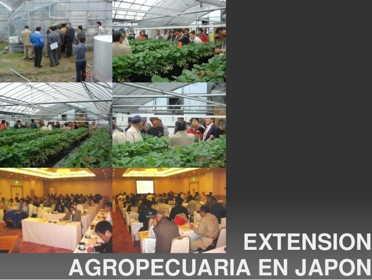 Extension agropecuaria en japon