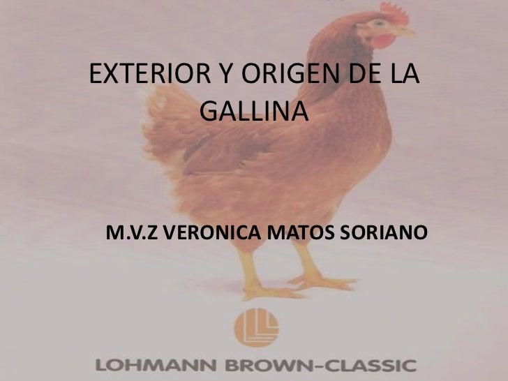 EXTERIOR Y ORIGEN DE LA       GALLINA M.V.Z VERONICA MATOS SORIANO