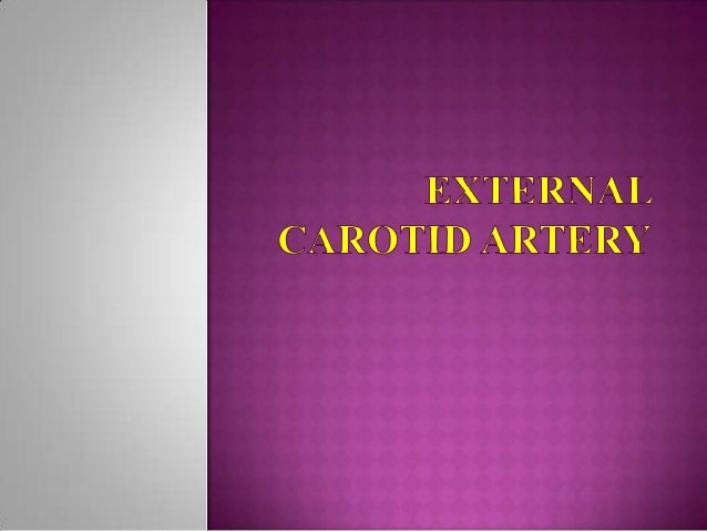  External  carotid artery is the chief artery which supplies to structures in the front of the neck and in the face.   D...
