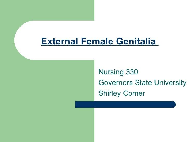 External Female Genitalia.330.No Pix.Gsu