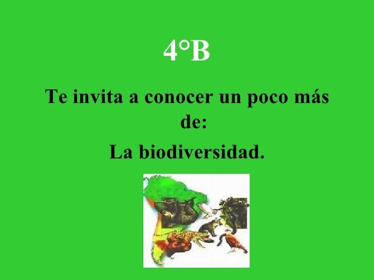 4°B <ul><li>Te invita a conocer un poco más de: </li></ul><ul><li>La biodiversidad. </li></ul>