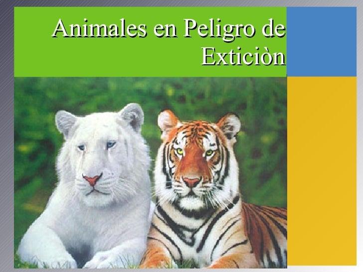 Animales en Peligro de Exticiòn