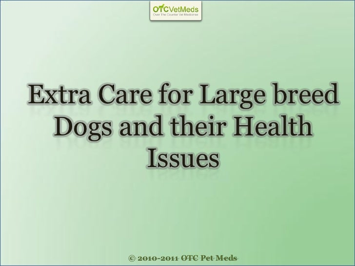 Extra Care for Large breed  Dogs and their Health          Issues        © 2010-2011 OTC Pet Meds