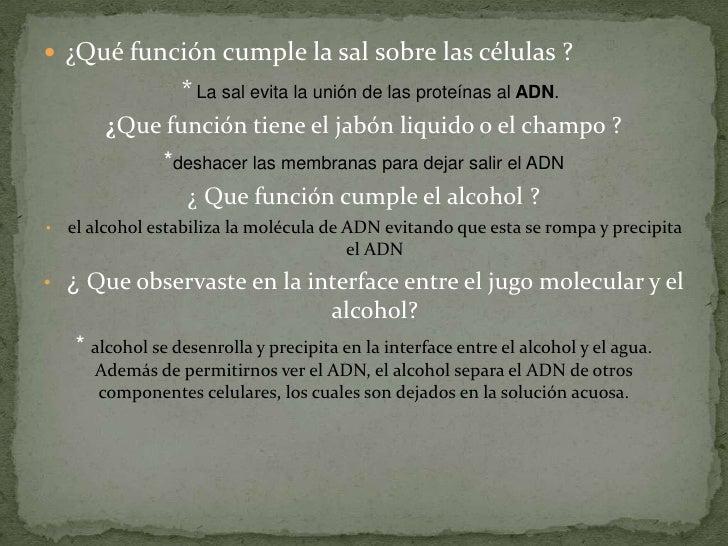 A que mujeres los maridos los alcohólicos