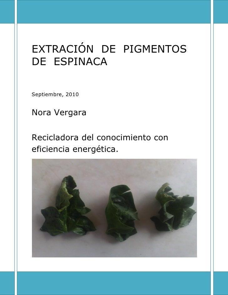 EXTRACIÓN DE PIGMENTOS DE ESPINACA  Septiembre, 2010   Nora Vergara   Recicladora del conocimiento con eficiencia energéti...