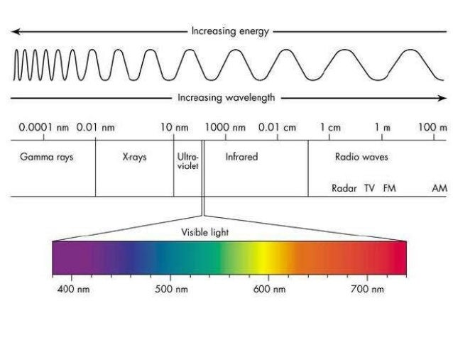 Gamma Rays X Rays Ultraviolet Rays Visible Light: Green WAVES: 0.0001 nm WAVES: 0.01 nm- 10 nm WAVES: 10 nm- 400 nm WAVES:...