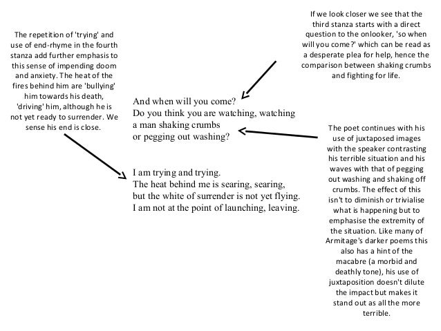hawk roosting analysis essay