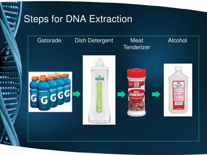 extraction dna: