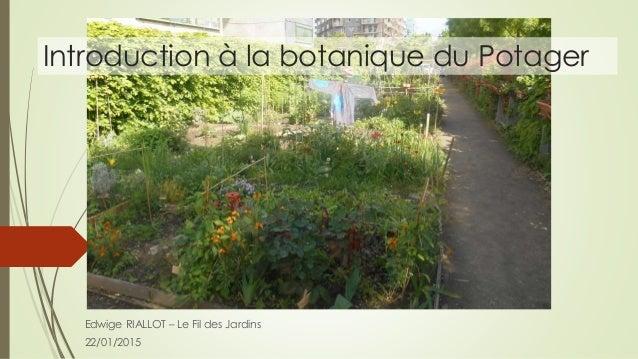 Introduction à la botanique du Potager Edwige RIALLOT – Le Fil des Jardins 22/01/2015