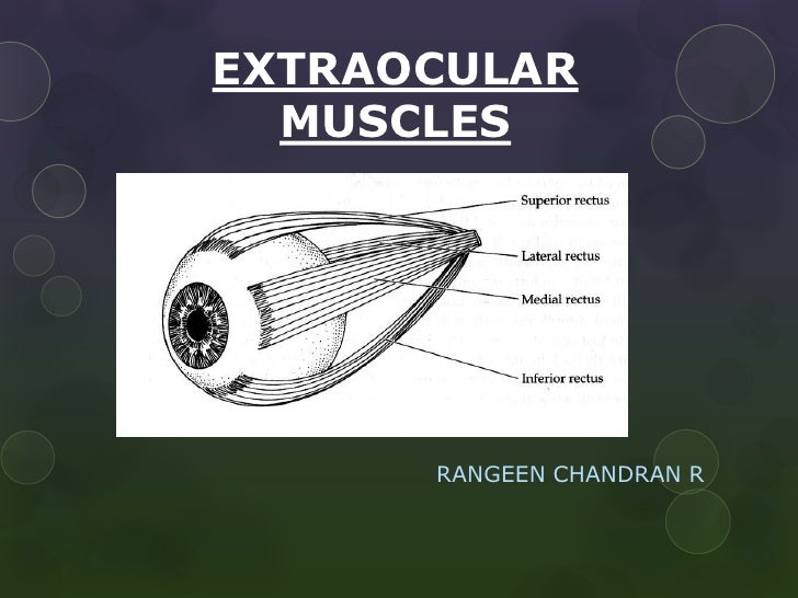 EXTRAOCULAR  MUSCLES      RANGEEN CHANDRAN R