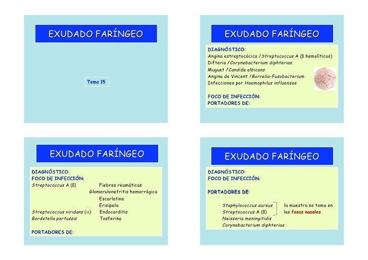 exudado_cultivo-faringeo
