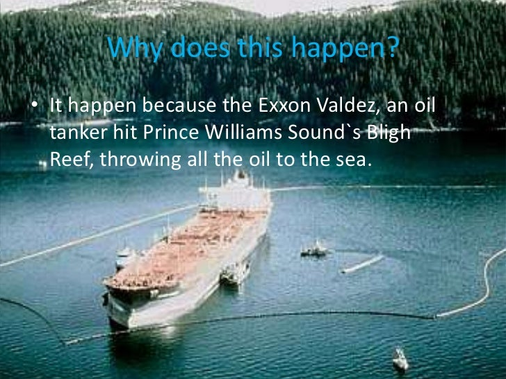 the exxon valdez essay I background information/ additional perspectives a exxon valdez oil spill march 24, 1989 marked the date of the largest oil tanker spill in the history of united states as the tanker exxon valdez spilled 11 million gallons of oil into alaska's prince william sound.