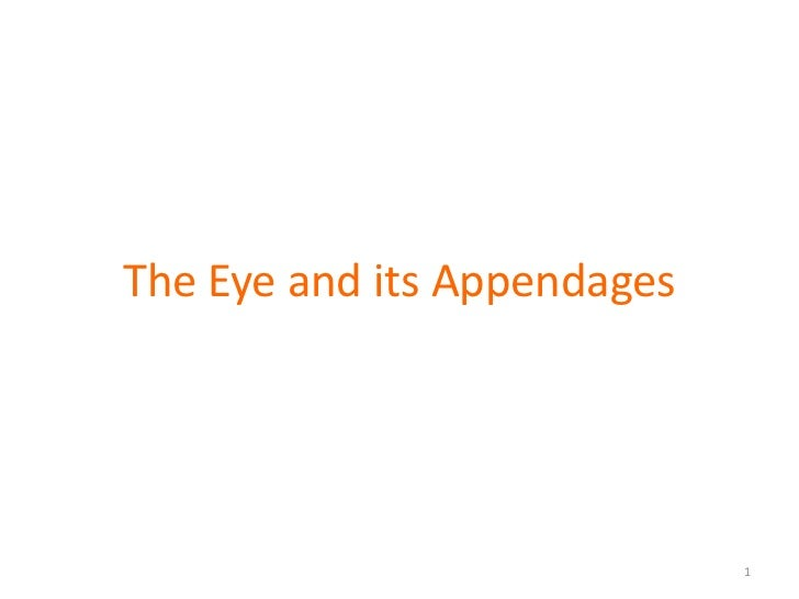 The Eye and its Appendages                             1