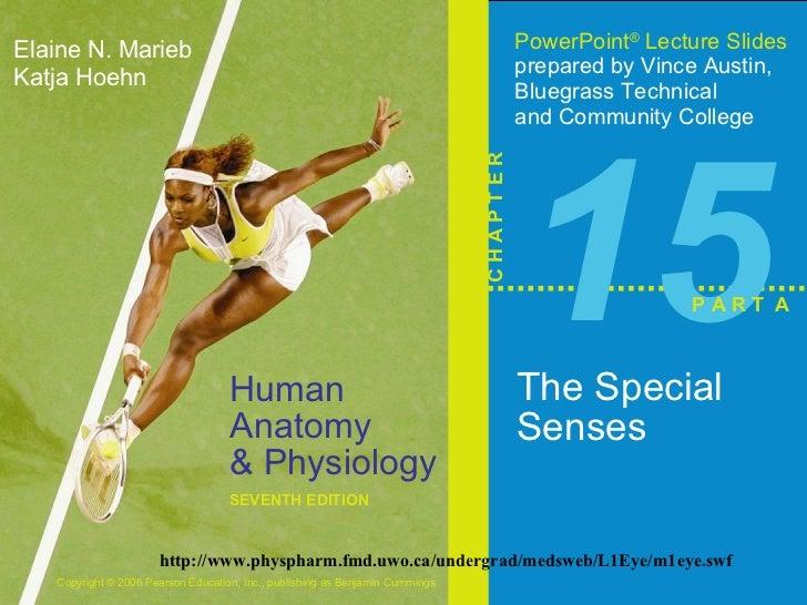 15 The Special Senses P A R T  A http://www.physpharm.fmd.uwo.ca/undergrad/medsweb/L1Eye/m1eye.swf