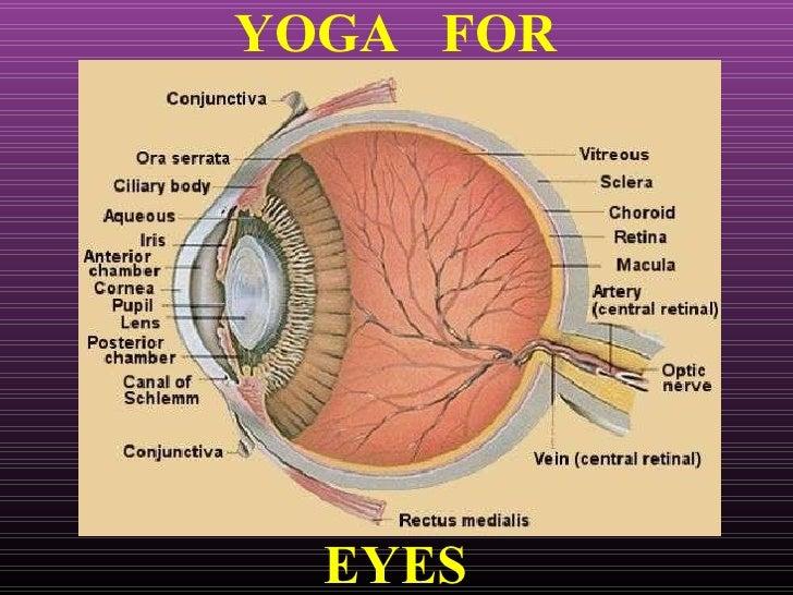 Eyes - Refractive Errors.ppt