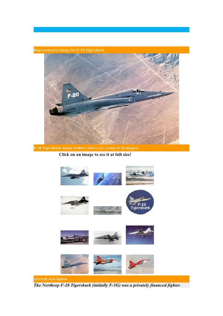 F- 20