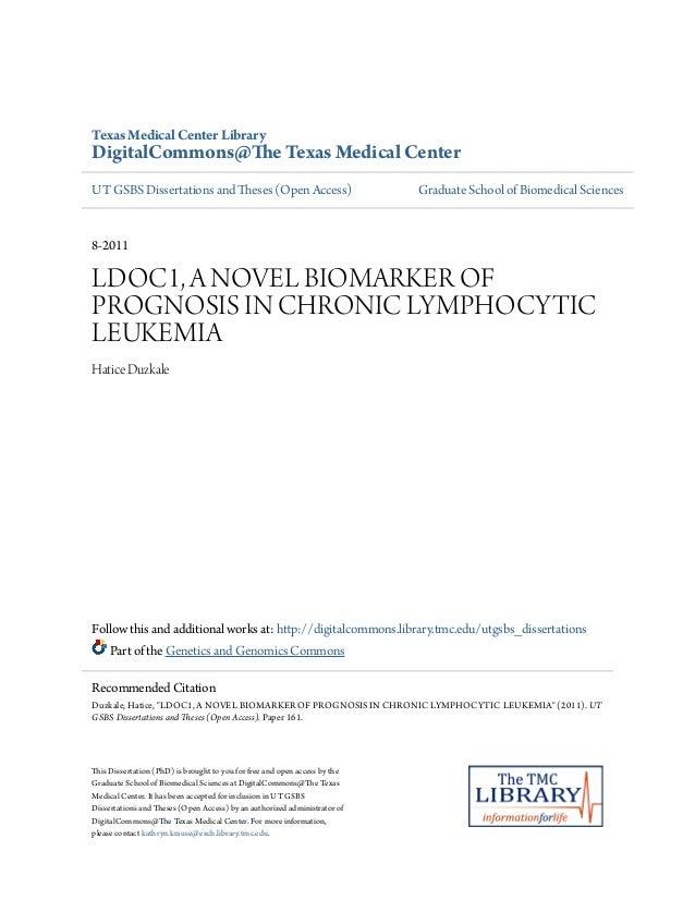 Dissertation novel