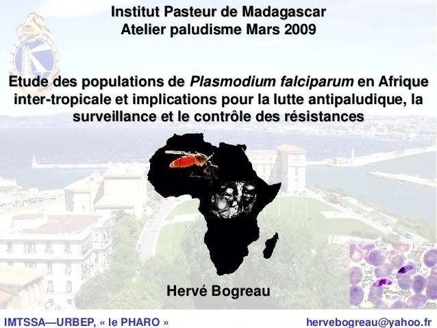 IMTSSA—URBEP, « le PHARO » hervebogreau@yahoo.frInstitut Pasteur de MadagascarAtelier paludisme Mars 2009Etude des populat...
