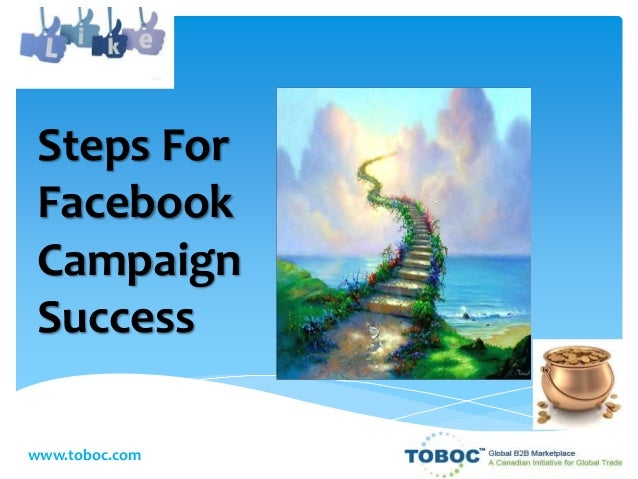 Steps For Facebook Campaign Success www.toboc.com