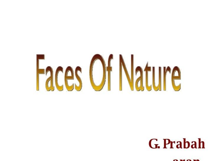 Faces Of Nature G.Prabaharan.