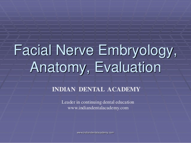 Facial Nerve Embryology, Anatomy, Evaluation INDIAN DENTAL ACADEMY Leader in continuing dental education www.indiandentala...