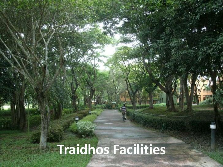 Traidhos Facilities