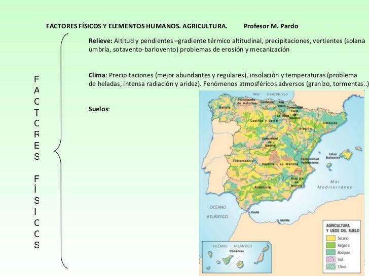 FACTORES FÍSICOS Relieve:  Altitud y pendientes –gradiente térmico altitudinal, precipitaciones, vertientes (solana umbría...