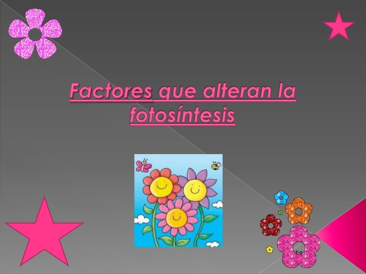 Factores que alteran la fotosíntesis<br />