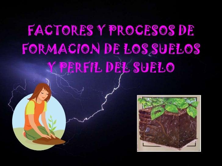 Factores y procesos de formacion de los suelos for Formacion de los suelos