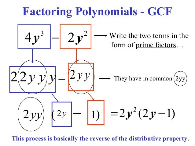 factoring using gcf worksheet