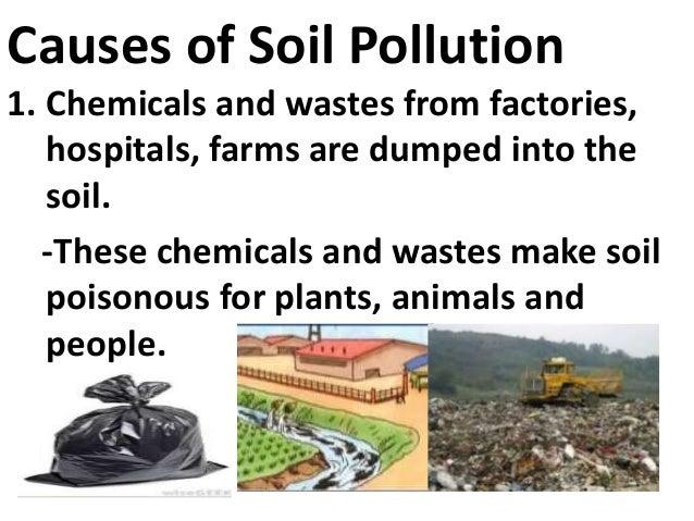 Essay On Soil Pollution