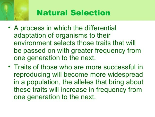 Is Natural Selection A Random Or Nonrandom Process