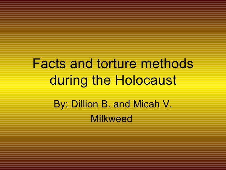 3 paragraph essay on the holocaust