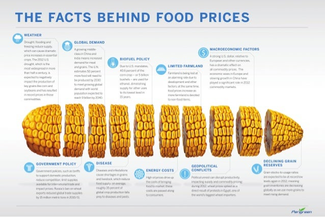 Facts Behind Food Prices for Perigreen Group of Companies by Inno Garage