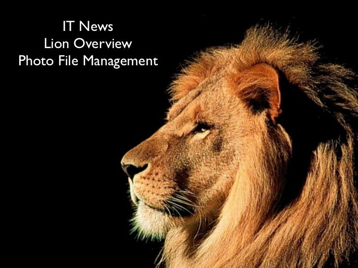 IT News    Lion OverviewPhoto File Management