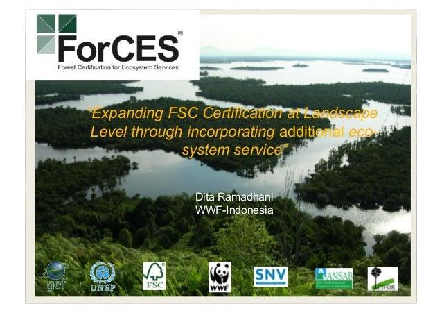 "©MichelRoggo/WWF-Canon 1 ""Expanding FSC Certification at Landscape Level through incorporating additional eco- system serv..."