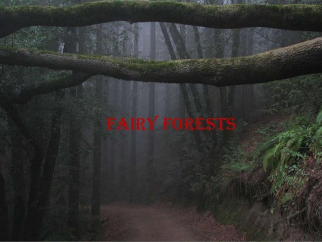 Fairy forests