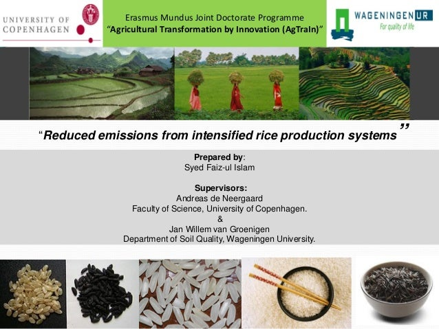 Reduced emissions from intensified rice production systems