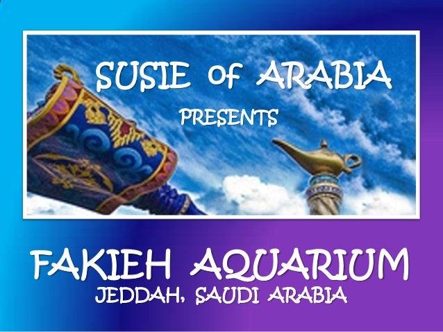 Fakieh Aquarium - Jeddah, Saudi Arabia