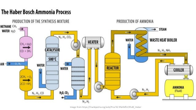 the characteristics of the haber bosch process in fertilizer production The history of ammonia to 2012 harry vroomen vice president, economic services the fertilizer institute november 19 pre haber-bosch n production.