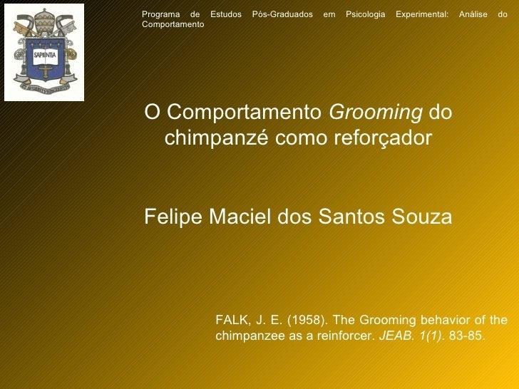 O Comportamento  Grooming  do chimpanzé como reforçador Felipe Maciel dos Santos Souza FALK, J. E. (1958). The Grooming be...