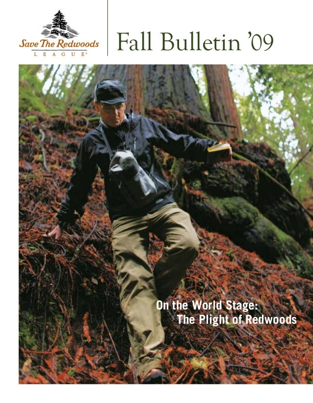 On the World Stage: The Plight of Redwoods Fall Bulletin '09