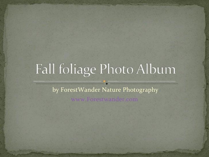 by ForestWander Nature Photography www.Forestwander.com