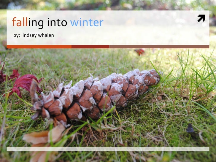 fall ing into  winter by: lindsey whalen