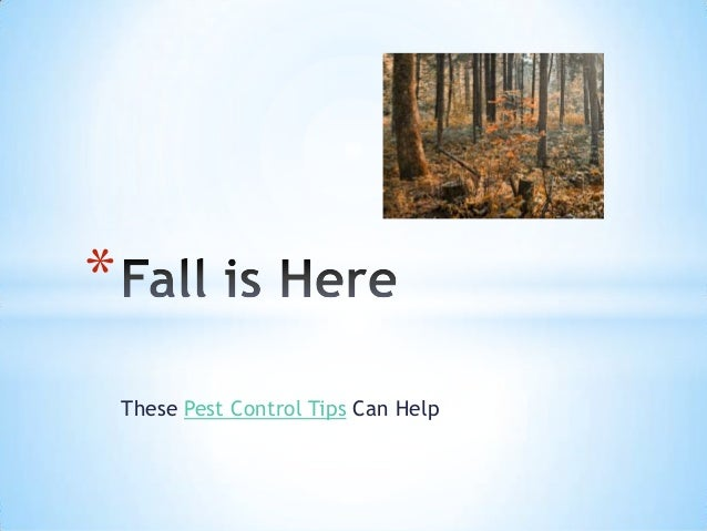 Fall is here   pest control tips that can help