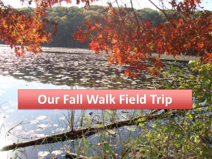 Fall Walk 2011